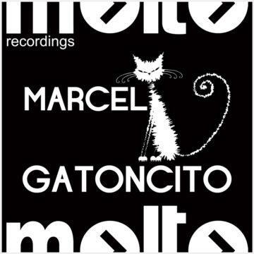 MOL214-gatoncito